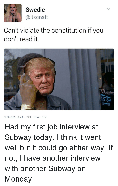 Job Interview, Memes, and 🤖: Swedie  Gaitsgnatt  Can't violate the constitution if you  don't read it  Openim  Tri-Sal  1 Ma PMA 21 Ian 17 Had my first job interview at Subway today. I think it went well but it could go either way. If not, I have another interview with another Subway on Monday.