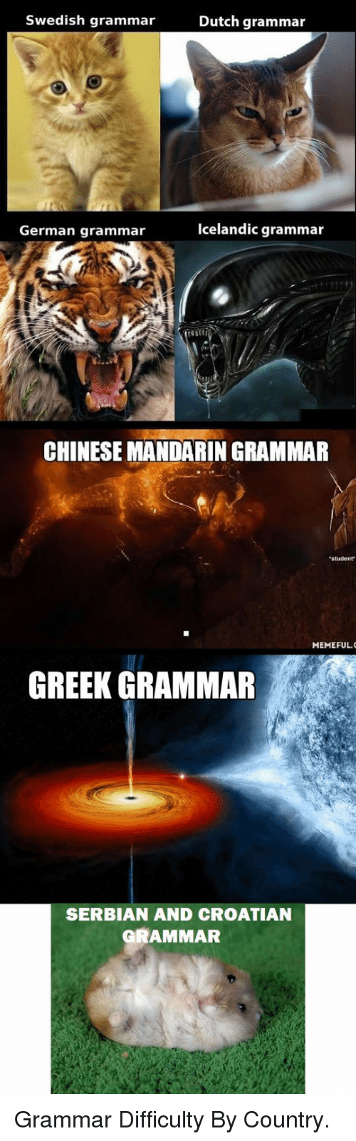 Chinese, Croatian, and Dutch Language: Swedish grammar  Dutch grammar  German grammar  Icelandic grammar  CHINESE MANDARIN GRAMMAR  student  MEMEFUL.  GREEK GRAMMAR  SERBIAN AND CROATIAN  GRAMMAR <p>Grammar Difficulty By Country.</p>