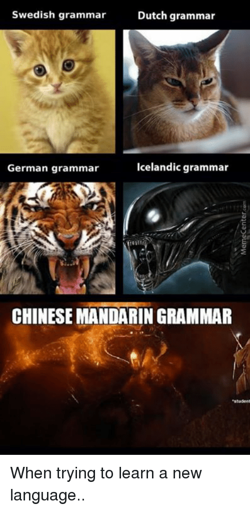 learning a new language process essay