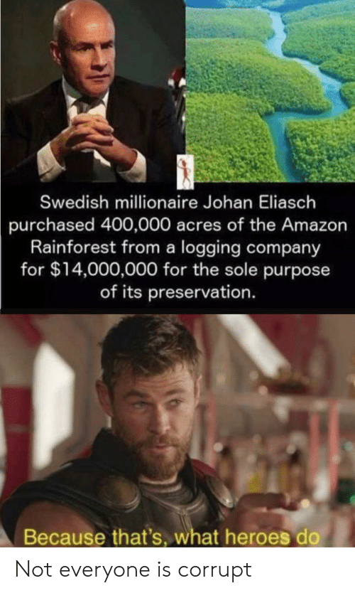 Swedish: Swedish millionaire Johan Eliasch  purchased 400,000 acres of the Amazon  Rainforest from a logging company  for $14,000,000 for the sole purpose  of its preservation.  Because that's, what heroes do Not everyone is corrupt