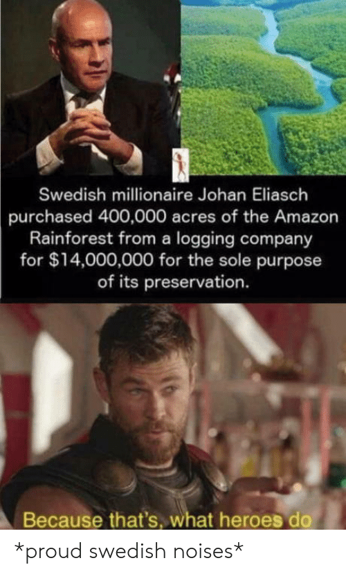 millionaire: Swedish millionaire Johan Eliasch  purchased 400,000 acres of the Amazon  Rainforest from a logging company  for $14,000,000 for the sole purpose  of its preservation.  Because that's, what heroes do *proud swedish noises*