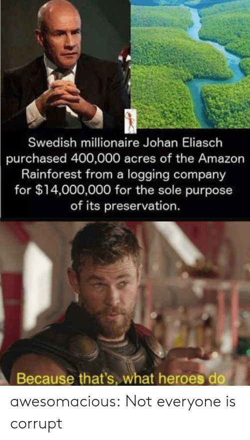 millionaire: Swedish millionaire Johan Eliasch  purchased 400,000 acres of the Amazon  Rainforest from a logging company  for $14,000,000 for the sole purpose  of its preservation.  Because that's, what heroes do awesomacious:  Not everyone is corrupt