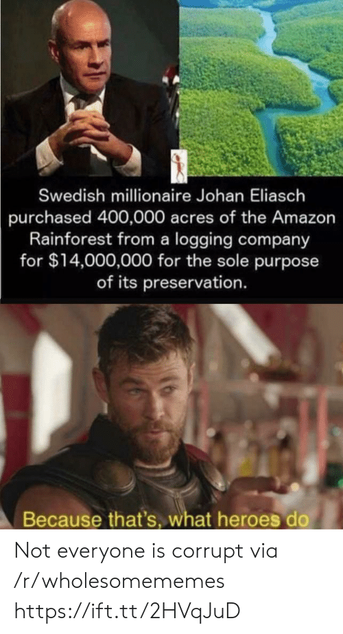 Swedish: Swedish millionaire Johan Eliasch  purchased 400,000 acres of the Amazon  Rainforest from a logging company  for $14,000,000 for the sole purpose  of its preservation.  Because that's, what heroes do Not everyone is corrupt via /r/wholesomememes https://ift.tt/2HVqJuD