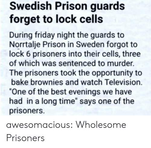 """Television: Swedish Prison guards  forget to lock cells  During friday night the guards to  Norrtalje Prison in Sweden forgot to  lock 6 prisoners into their cells, three  of which was sentenced to murder.  The prisoners took the opportunity to  bake brownies and watch Television.  """"One of the best evenings we have  had in a long time"""" says one of the  prisoners. awesomacious:  Wholesome Prisoners"""