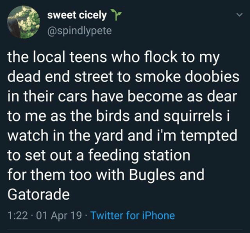 tempted: sweet cicely  @spindlypete  the local teens who flock to my  dead end street to smoke doobies  in their cars have become as dear  to me as the birds and squirrels i  watch in the yard and i'm tempted  to set out a feeding station  for them too with Bugles and  Gatorade  1:22. 01 Apr 19 Twitter for iPhone