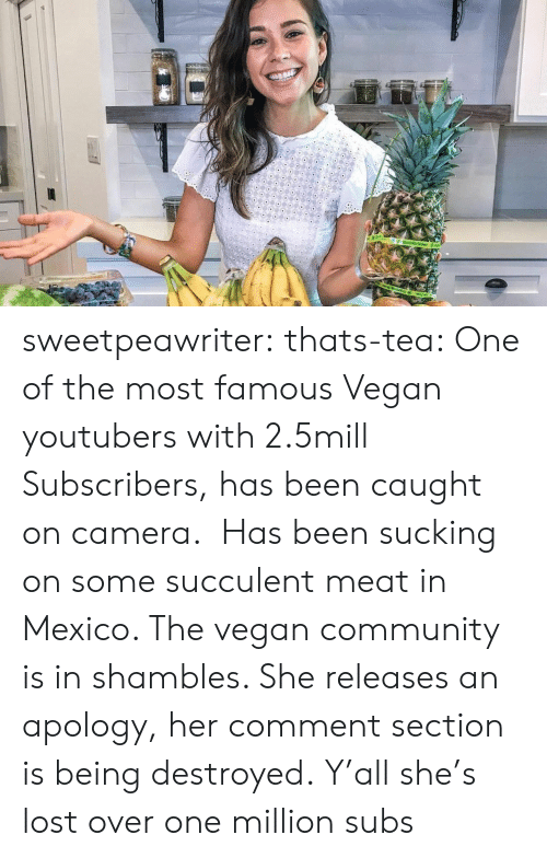 shambles: sweetpeawriter: thats-tea:    One of the most famous Vegan youtubers with 2.5mill Subscribers, has been caught on camera.  Has been sucking on some succulent meat in Mexico. The vegan community is in shambles. She releases an apology, her comment section is being destroyed.  Y'all she's lost over one million subs