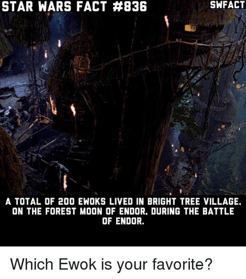 Bailey Jay, Memes, and Star Wars: SWFACT  STAR WARS FACT #836  A TOTAL OF 200 EWOKS LIVED IN BRIGHT TREE VILLAGE.  ON THE FOREST MOON OF ENDOR. DURING THE BATTLE  OF ENDOR. Which Ewok is your favorite?
