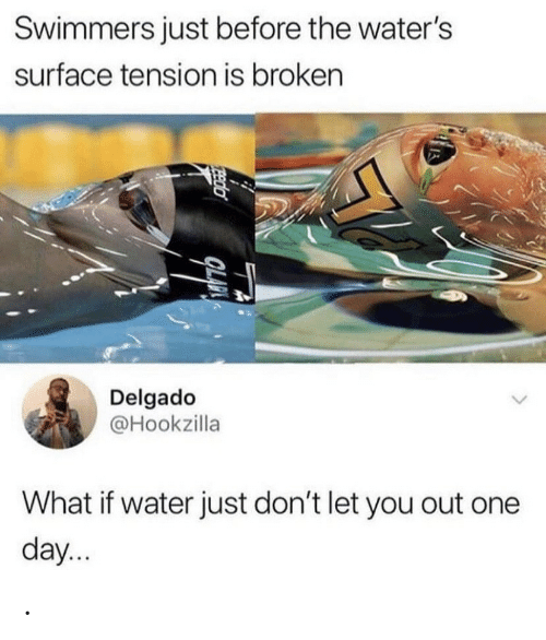 waters: Swimmers just before the water's  surface tension is broken  Delgado  @Hookzilla  What if water just don't let you out one  day...  Eeda .