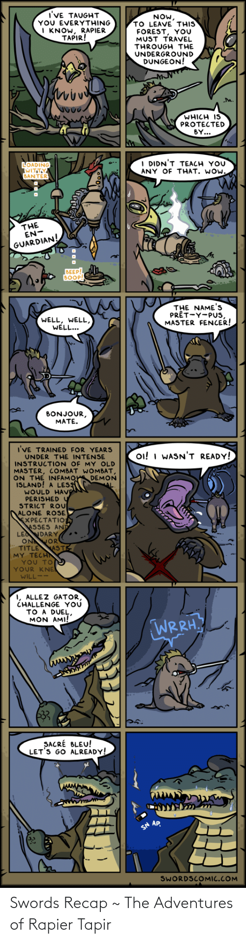 swords: Swords Recap ~ The Adventures of Rapier Tapir