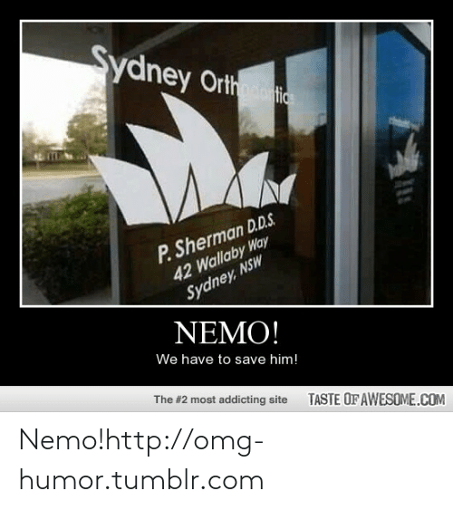 Sherman: Sydney Orth  P. Sherman D.D.S.  42 Wallaby Way  Sydney, NSW  NEMO!  We have to save him!  The #2 most addicting site  TASTE OFAWESOME.COM Nemo!http://omg-humor.tumblr.com