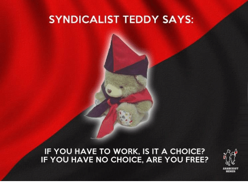Anarchist: SYNDICALIST TEDDY SAYS:  IF YOU HAVE TO WORK, IS IT A CHOICE?  IF YOU HAVE NO CHOICE, ARE YOU FREE?  ANARCHIST  MEMES