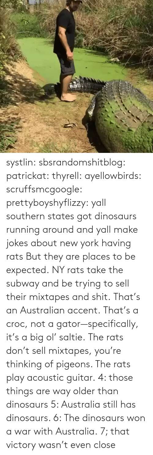 subway: systlin: sbsrandomshitblog:  patrickat:   thyrell:  ayellowbirds:  scruffsmcgoogle:  prettyboyshyflizzy: yall southern states got dinosaurs running around and yall make jokes about new york having rats  But they are places to be expected. NY rats take  the subway and be trying to sell their mixtapes and shit.  That's an Australian accent. That's a croc, not a gator—specifically, it's a big ol' saltie. The rats don't sell mixtapes, you're thinking of pigeons. The rats play acoustic guitar.   4: those things are way older than dinosaurs   5: Australia still has dinosaurs.    6: The dinosaurs won a war with Australia.  7; that victory wasn't even close