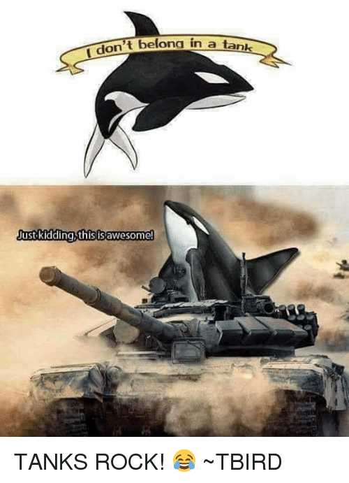 Memes, Belongings, and 🤖: t belong in a tank  don  Just kidding this IS awesome TANKS ROCK!  😂  ~TBIRD