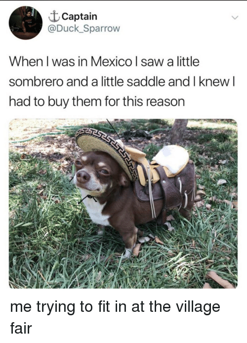 The Village: t Captain  @Duck_Sparrow  When l was in Mexico saw a little  sombrero and a little saddle and l knew l  had to buy them for this reason me trying to fit in at the village fair