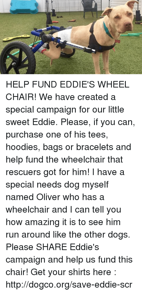creat a: t) HELP FUND EDDIE'S WHEEL CHAIR! We have created a special campaign for our little sweet Eddie. Please, if you can, purchase one of his tees, hoodies, bags or bracelets and help fund the wheelchair that rescuers got for him! I have a special needs dog myself named Oliver who has a wheelchair and I can tell you how amazing it is to see him run around like the other dogs. Please SHARE Eddie's campaign and help us fund this chair! Get your shirts here : http://dogco.org/save-eddie-scr