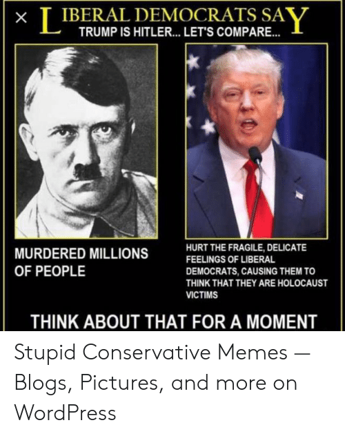 Funny Conservative Memes: T IBERAL DEMOCRATS SAV  TRUMP IS HITLER... LET'S COMPARE..  HURT THE FRAGILE, DELICATE  MURDERED MILLIONS  FEELINGS OF LIBERAL  OF PEOPLE  DEMOCRATS, CAUSING THEM TO  THINK THAT THEY ARE HOLOCAUST  VICTIMS  THINK ABOUT THAT FOR A MOMENT Stupid Conservative Memes — Blogs, Pictures, and more on WordPress