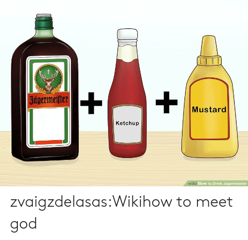 Wikihow: t  |Jagermeifter  Mustard  Ketchup  wiki How to Drink Jagermeister zvaigzdelasas:Wikihow to meet god