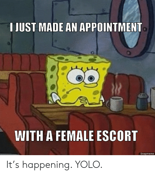 YOLO: T JUST MADE AN APPOINTMENT  WITH A FEMALE ESCORT  Snapmeme It's happening. YOLO.
