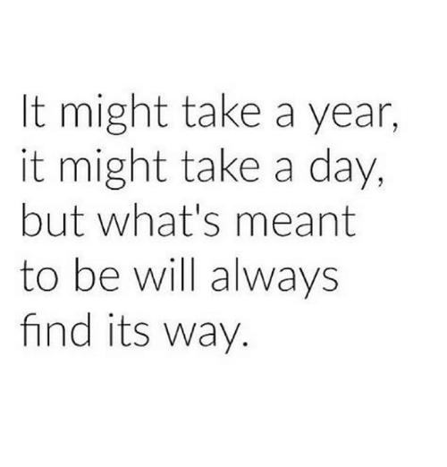 Memes, 🤖, and Takeing: t might take a year,  it might take a day,  but what's meant  to be will always  find its way