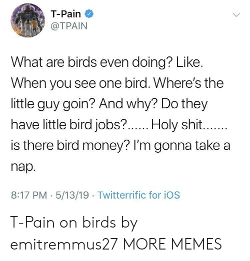 lim: T-Pain  @TPAIN  What are birds even doing? Like.  When you see one bird. Where's the  little guy goin? And why? Do they  have little bird jobs?  .Holy shit  is there bird money? lI'm gonna take a  nap.  8:17 PM 5/13/19 Twitterrific for iOS T-Pain on birds by emitremmus27 MORE MEMES
