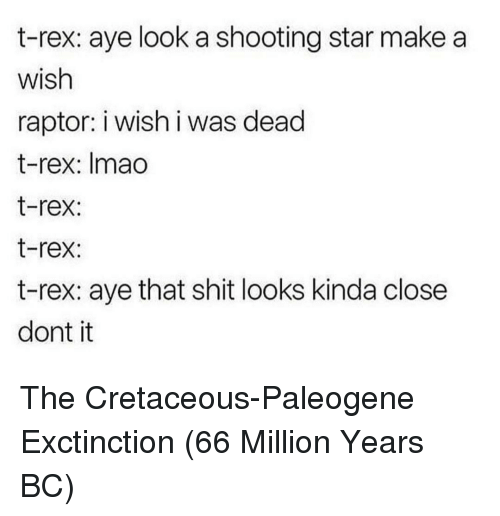 shooting star: t-rex: aye look a shooting star make a  wish  raptor: i wish i was dead  t-rex: Imao  t-rex:  t-rex:  t-rex: aye that shit looks kinda close  dont it The Cretaceous-Paleogene Exctinction (66 Million Years BC)