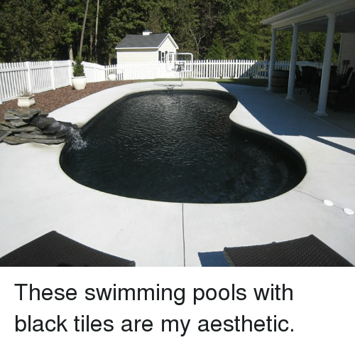 Funny Aesthetic Memes Of 2016 On Sizzle Dank