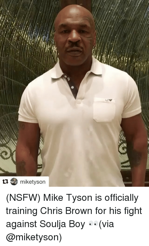 Chris Brown, Mike Tyson, and Nsfw: ta miketyson (NSFW) Mike Tyson is officially training Chris Brown for his fight against Soulja Boy 👀(via @miketyson)