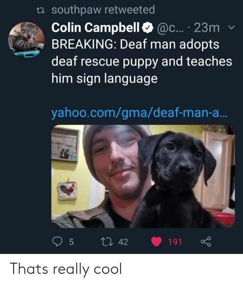 Colin: ta southpaw retweeted  Colin Campbell@c... 23m  BREAKING: Deaf man adopts  deaf rescue puppy and teaches  him sign languag  yahoo.com/gma/deaf-man-a Thats really cool