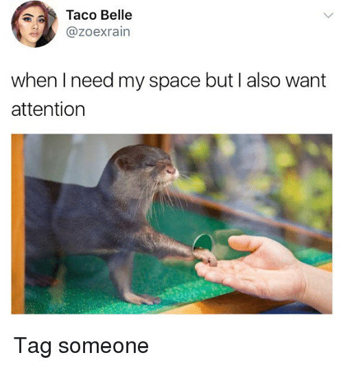 Memes, Space, and Tag Someone: Taco Belle  @Zoexrain  when I need my space but I also want  attention Tag someone