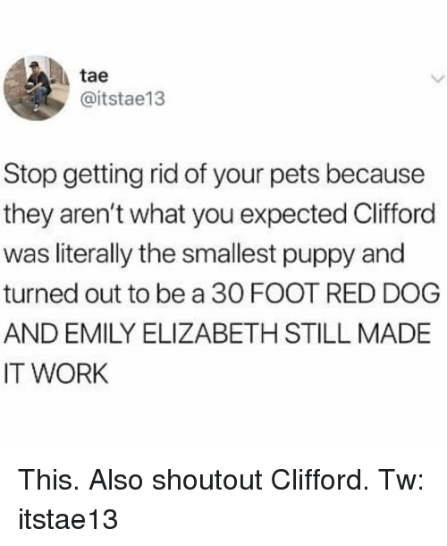Memes, Work, and Pets: tae  @itstae13  Stop getting rid of your pets because  they aren't what you expected Clifford  was literally the smallest puppy and  turned out to be a 30 FOOT RED DOG  AND EMILY ELIZABETH STILL MADE  IT WORK This. Also shoutout Clifford. Tw: itstae13