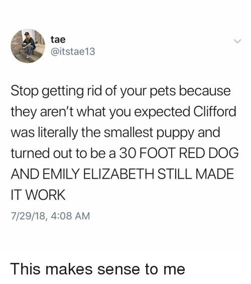 Memes, Work, and Pets: tae  @itstae13  Stop getting rid of your pets because  they aren't what you expected Clifford  was literally the smallest puppy and  turned out to be a 30 FOOT RED DOG  AND EMILY ELIZABETH STILL MADE  IT WORK  7/29/18, 4:08 AM This makes sense to me