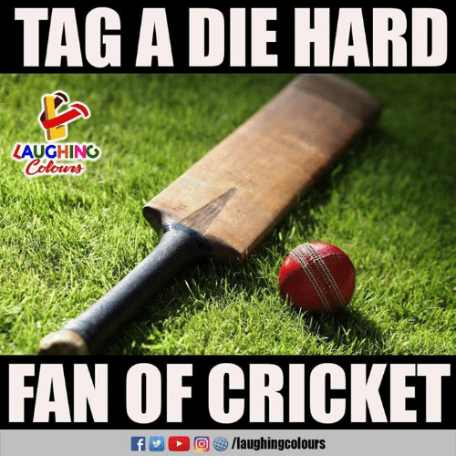Cricket, Indianpeoplefacebook, and Die Hard: TAG A DIE HARD  LAUGHING  FAN OF CRICKET