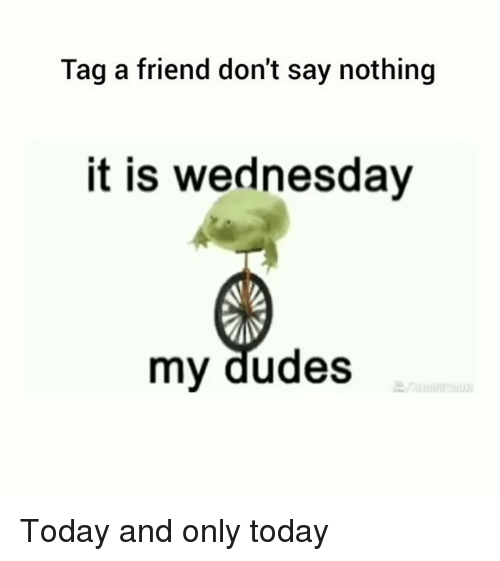 Memes, Today, and Wednesday: Tag a friend don't say nothing  it is wednesday  my dudes Today and only today