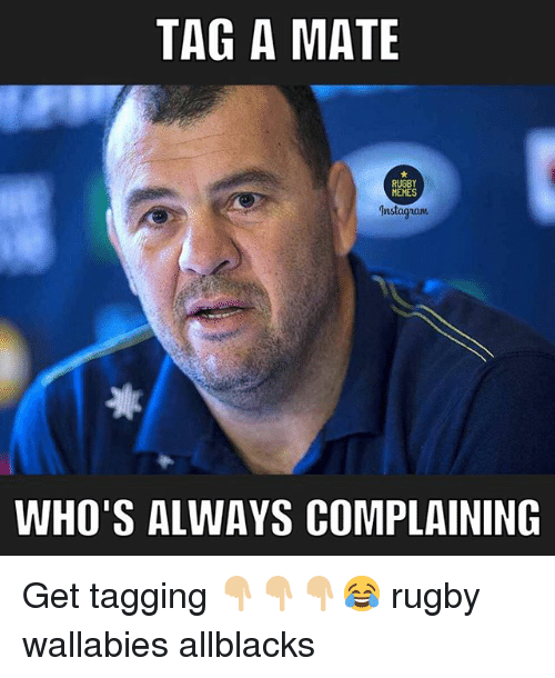 Memes, Rugby, and Wallabies: TAG A MATE  RUGBY  MEMES  Instagam  WHO'S ALWAYS COMPLAINING Get tagging 👇🏼👇🏼👇🏼😂 rugby wallabies allblacks