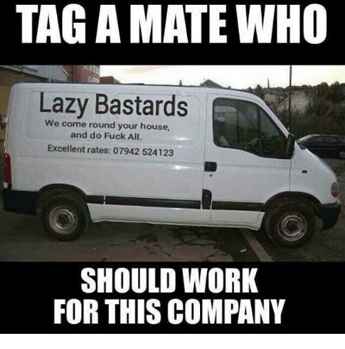 Lazy, Memes, and Work: TAG A MATE WHO  Lazy Bastards  We come round your house,  and do Fuck All.  Excellent rates: 07942 524123  SHOULD WORK  FOR THIS COMPANY
