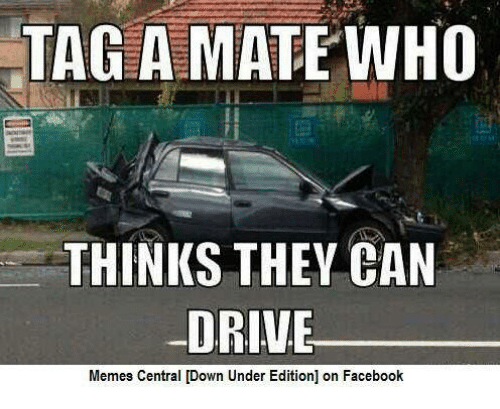 Driving Memes: TAG A MATE WHO  THINKS THEY CAN  DRIVE  Memes Central [Down Under Edition] on Facebook