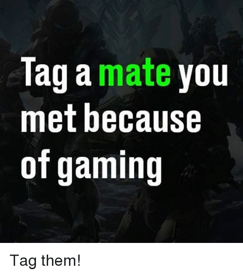Memes, Mets, and Tagged: Tag a  mate  you  met because  of gaming Tag them!