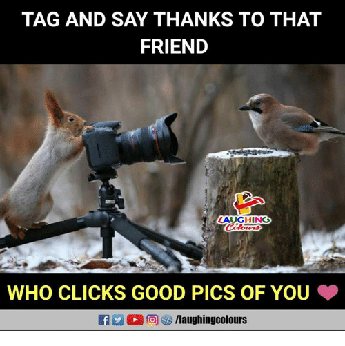 Good, Indianpeoplefacebook, and Who: TAG AND SAY THANKS TO THAT  FRIEND  AUGHING  WHO CLICKS GOOD PICS OF YOU