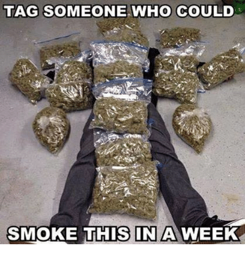 Memes, Tag Someone, and 🤖: TAG SOMEONE WHO COULD  SMOKE THIS IN A WEEK
