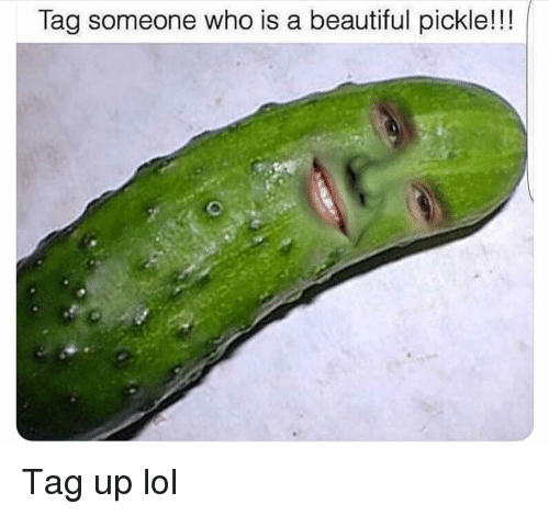 Tag Someone Who Is: Tag someone who is a beautiful pickle!!! Tag up lol