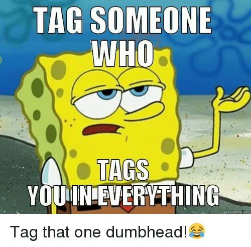 Quick Meme: TAG SOMEONE  WHO  TAGS  YOUIN EVERYTHING  quick meme com Tag that one dumbhead!😂