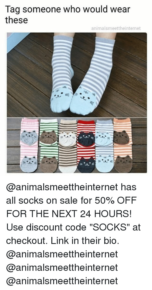 """Funny, Link, and Tag Someone: Tag someone who would wear  these  animalsmeettheinternet @animalsmeettheinternet has all socks on sale for 50% OFF FOR THE NEXT 24 HOURS! Use discount code """"SOCKS"""" at checkout. Link in their bio. @animalsmeettheinternet @animalsmeettheinternet @animalsmeettheinternet"""