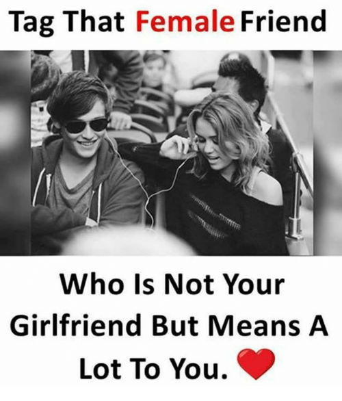 Friends, Memes, and Girlfriend: Tag That Female  Friend  Who is Not Your  Girlfriend But Means A  Lot To You.