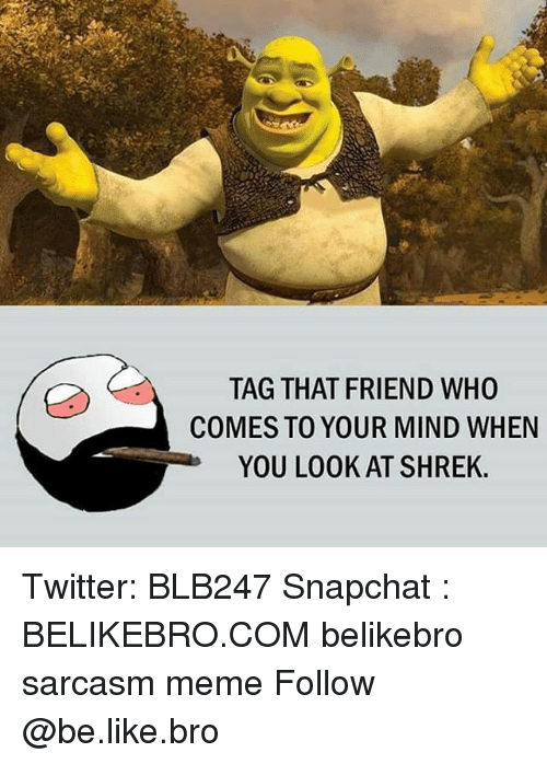Be Like, Meme, and Memes: TAG THAT FRIEND WHO  COMES TO YOUR MIND WHEN  YOU LOOK AT SHREK. Twitter: BLB247 Snapchat : BELIKEBRO.COM belikebro sarcasm meme Follow @be.like.bro