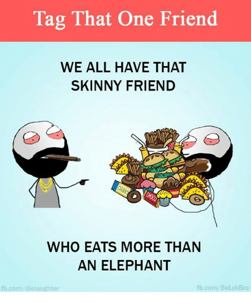 Skinny: Tag That One Friend  WE ALL HAVE THAT  SKINNY FRIEND  WHO EATS MORE THAN  AN ELEPHANT  fb.com  Bro  fb.com die laughter