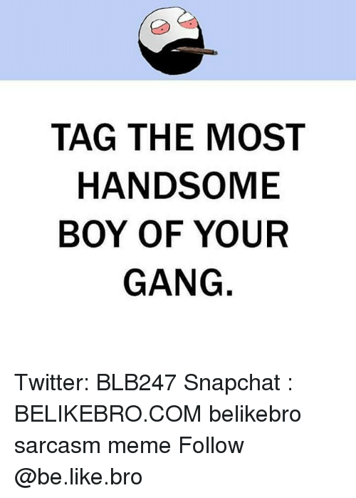 Be Like, Meme, and Memes: TAG THE MOST  HANDSOME  BOY OF YOUR  GANG Twitter: BLB247 Snapchat : BELIKEBRO.COM belikebro sarcasm meme Follow @be.like.bro
