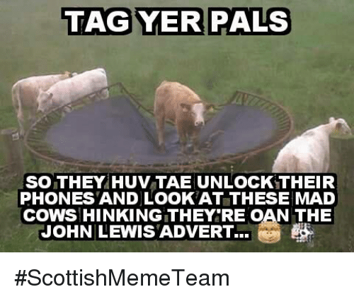 Adverted: TAG YER PALS  SO THEY HUV TALE UNLOCK THEIR  PHONES AND LOOK AT THESE MAD  COWSHINKINGITHEY RE OAN THE  JOHN LEWIS ADVERT... #ScottishMemeTeam