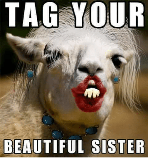 Beautiful, Memes, and Tagged: TAG YOUR  BEAUTIFUL SISTER