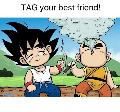 Best Friend, Weed, and Best: TAG your best friend!  7%