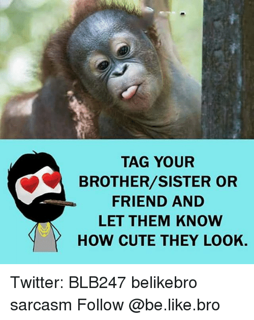 Funny Memes For Your Brother : Best memes about brother sister